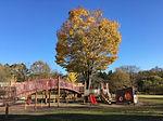カベティー,オリジナルフォト,フォトライブラリー,公園内のアスレチック風景