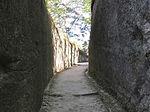 カベティー,オリジナルフォト,フォトライブラリー,松島内の沿道