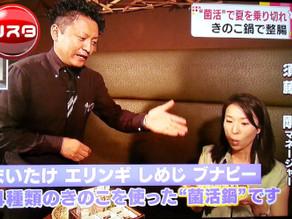 TBS NスタでGINZA春夏秋豚の『菌活鍋』が取り上げられました!