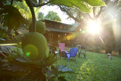 Sacred Garden Cabin 1, Maui, HI