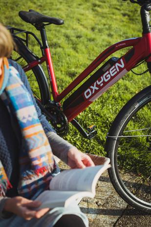 Tree_Bikes_4.jpg
