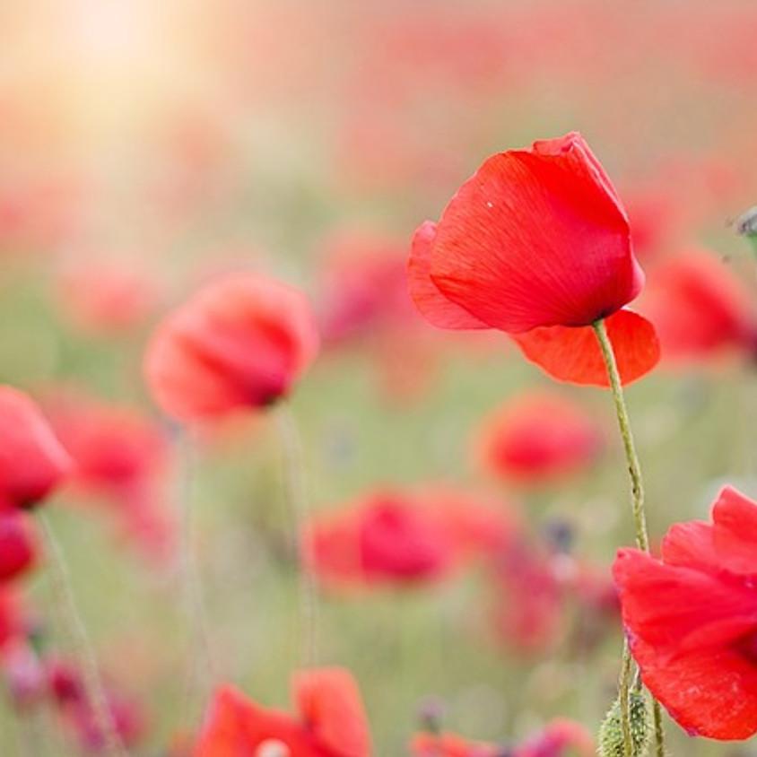 Fleurs en mythe