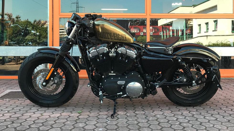 Harley Davidson Sportster Forty Eight  2013