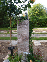 Baumberger2.jpg