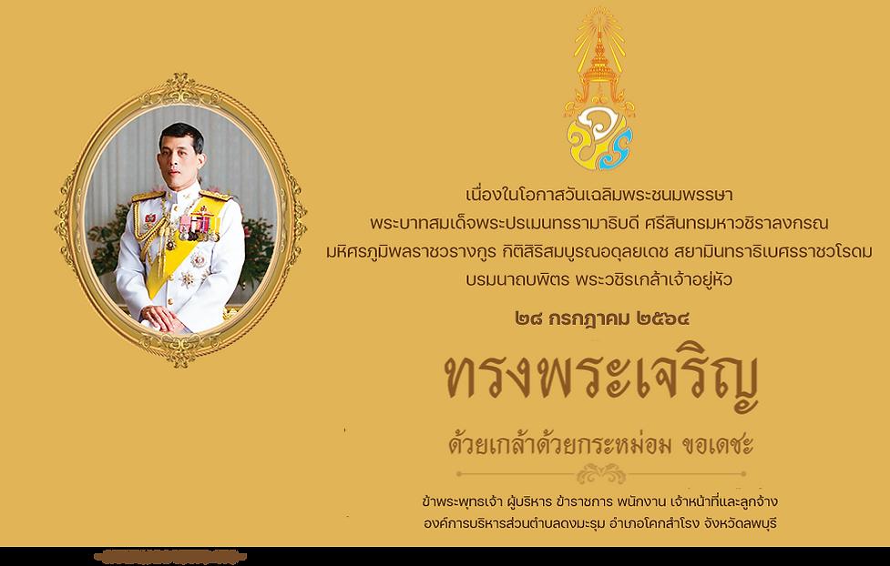 Banner_King10_Donamaroom.png