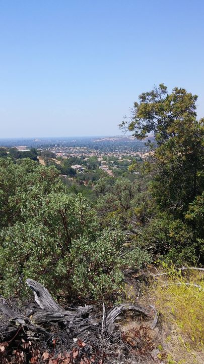 Hike in the Bay Area