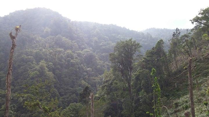 Cusuco National Park