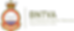 BNTVA_TM_Logo_1173575_300dpi.png