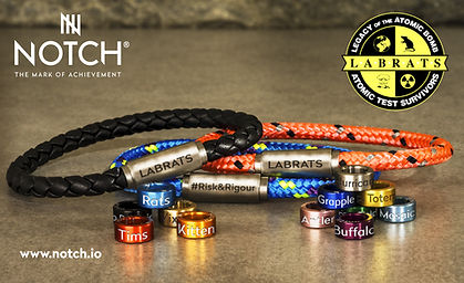 Labrats bracelet- vibrant.jpg