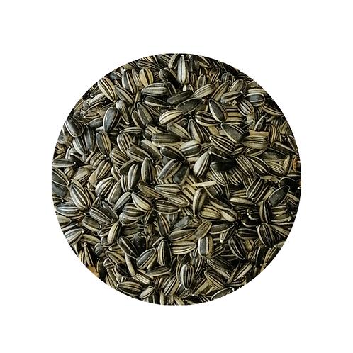 BIRDS - Bird Seed - Perky Pets -Sunflower Stripped