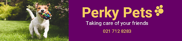 Perky Pets Email Header 2020 a.png