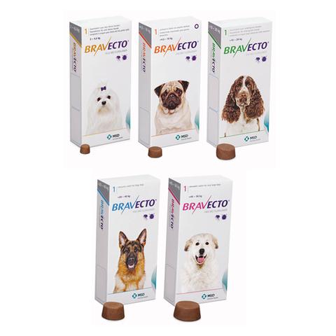 DOGS - Tick & Flea - Bravecto