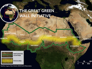 The Great Green Wall Initiative : stocktaking after over a decade