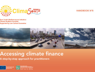 """The """"how-to"""" of accessing climate finance: developing a climate finance handbook for the MENA region"""