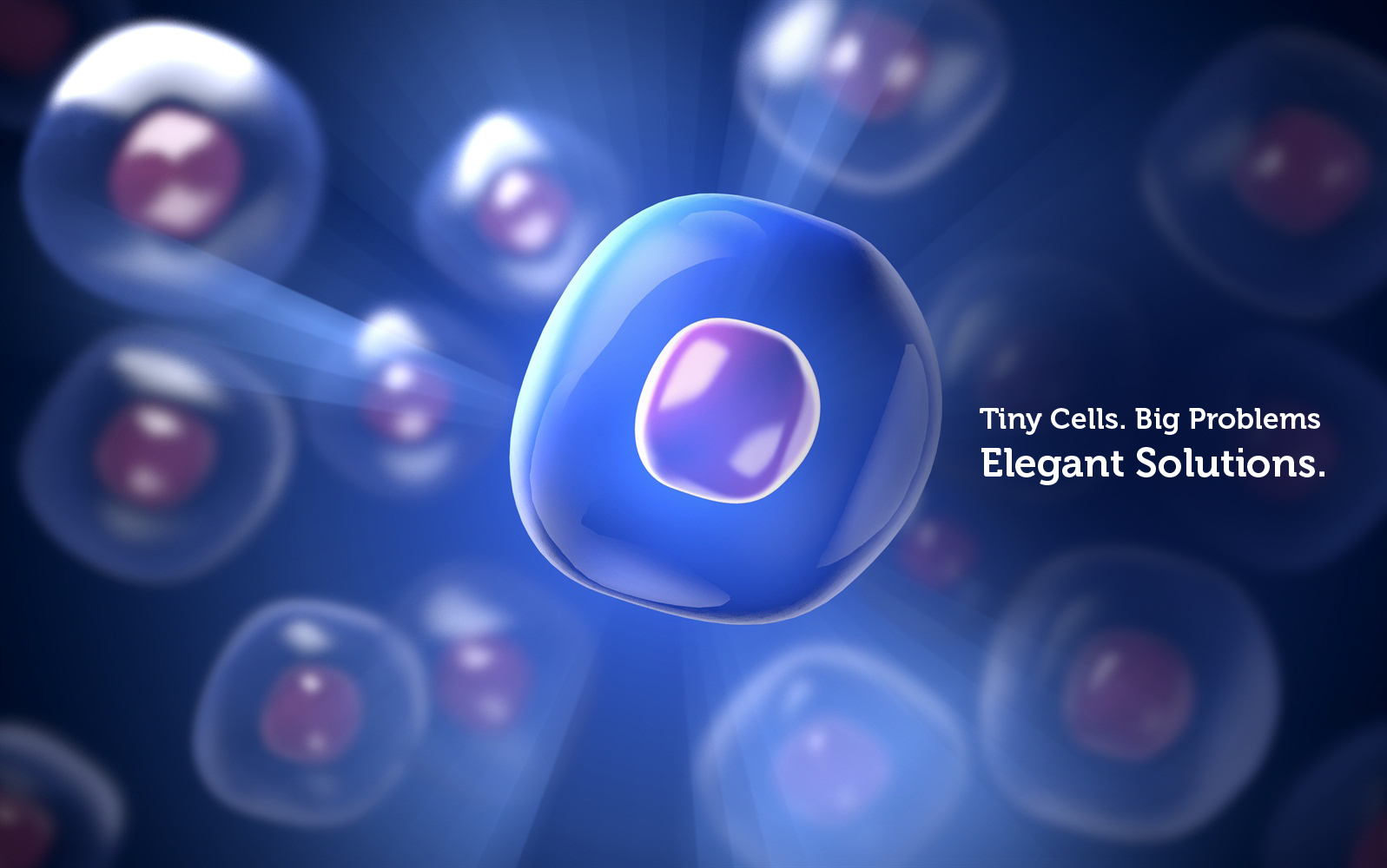 Tiny Cells Big Problems. Elegant Solutions.