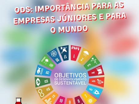 ODS: Importância para as Empresas Júniores e para o Mundo