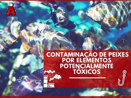 Contaminação de peixes por elementos potencialmente tóxicos