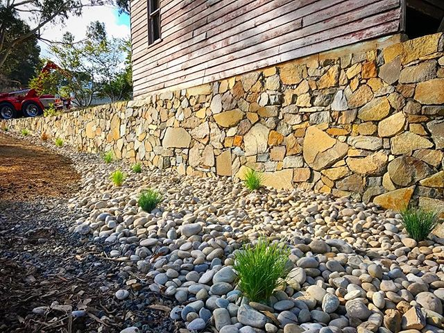 River stone swale drain and stone wall #vandiemenslandscapes #nativeplants #swale #stonewall #stonem