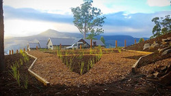 Snowy Peek project #vandiemenslandscapes #nativegarden #landscapedesign #gardendesign #tasmaniangard