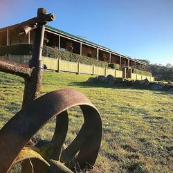 Picket Fence on our White Kangaroo Project #vandiemenslandscapes #landscaping #landscapedesign #gard