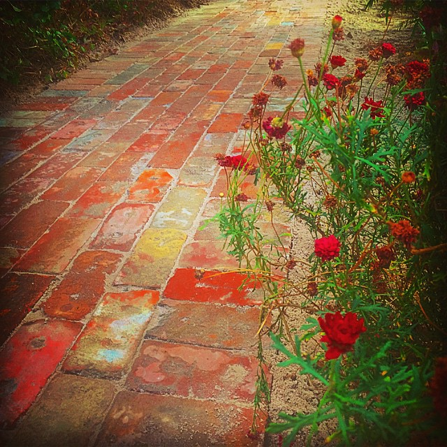 Garden path using recycled bricks