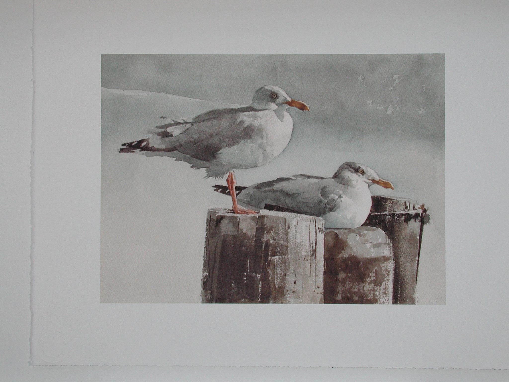 Jersey Shore Gulls