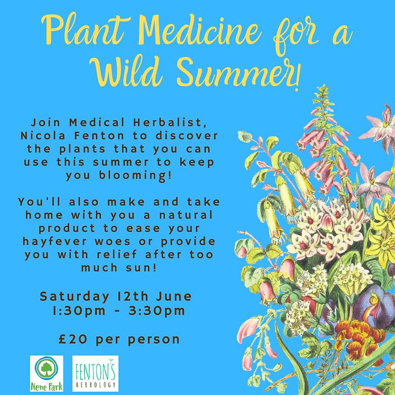 Plant Medicine for a Wild Summer @ Nene Park