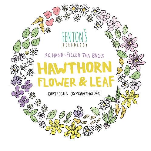 Hawthorn Leaf & Flowers