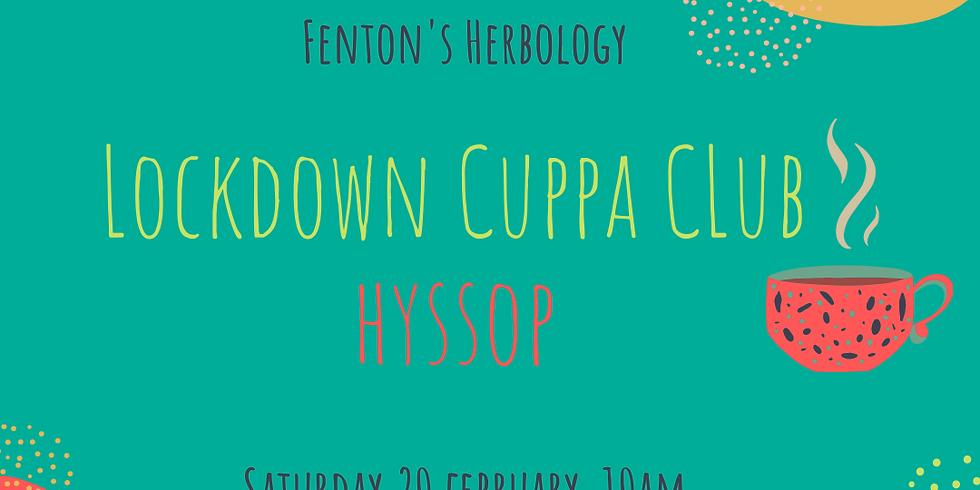 Lockdown Cuppa Club - Hyssop