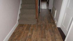 New Forestry  Kielder Forest Flooring with Brighton Rock, William Stripe carpe