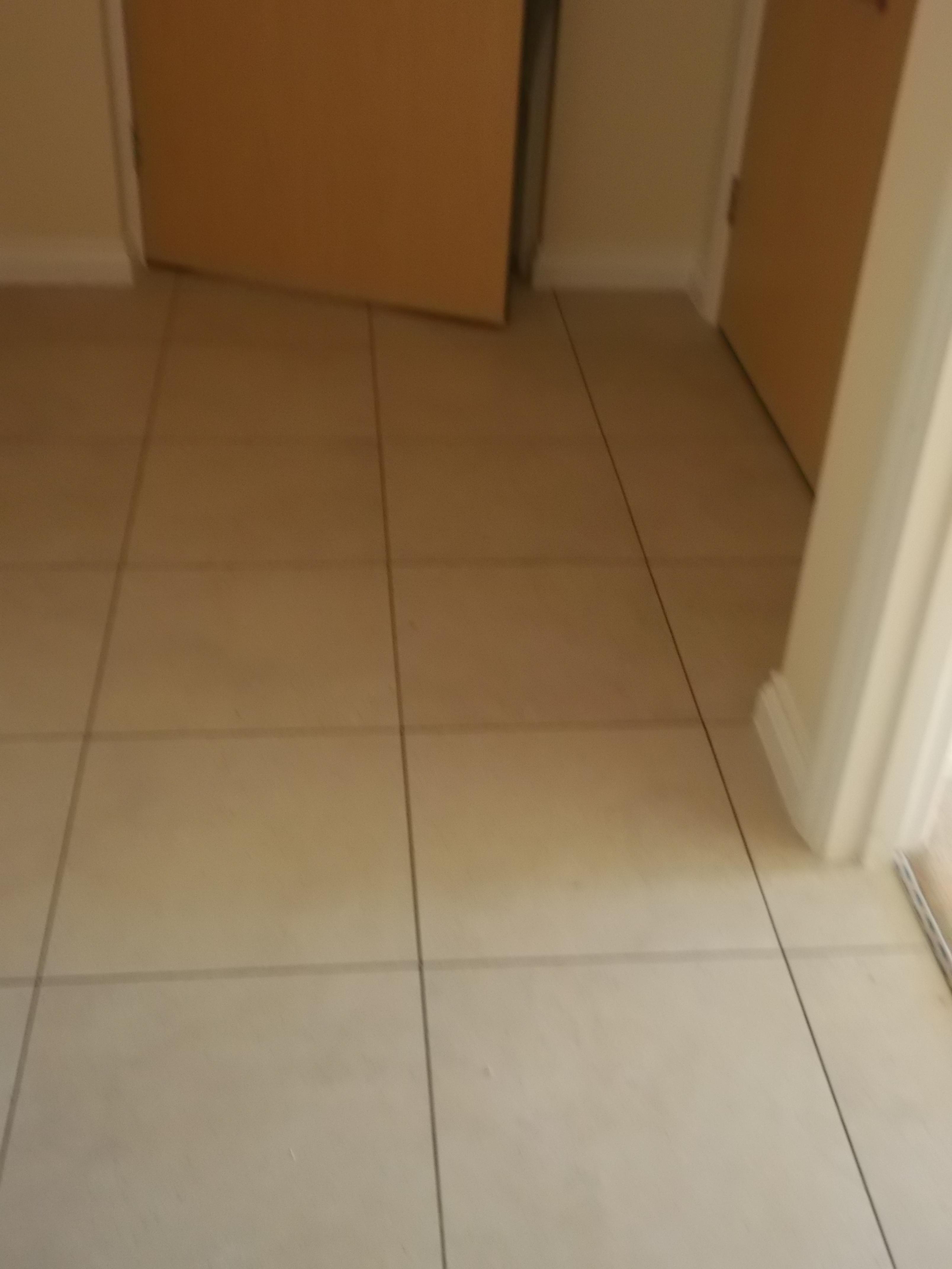 Colonia flooring  (1).JPG