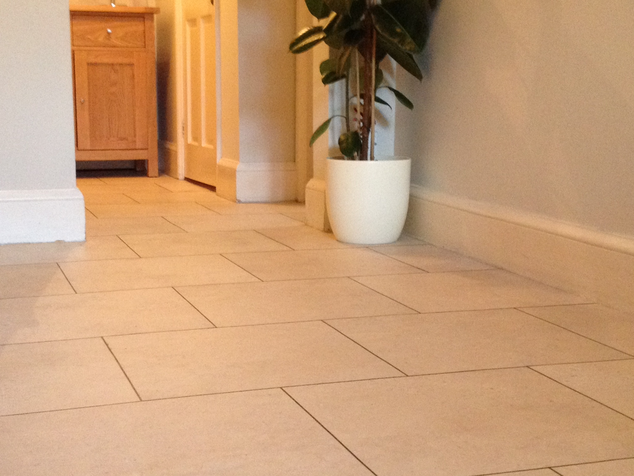 Colonia flooring - Natural Limestone & Graphite feature strips  (1).jpeg