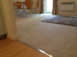 Stain Free Appeal - Dove Grey