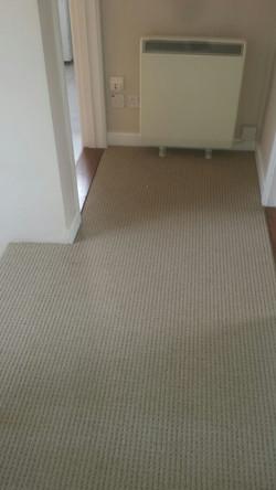 Glenweave, Oatmeal Beige carpet  (2).JPG