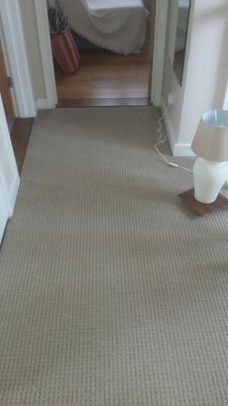 Glenweave, Oatmeal Beige carpet  (1).JPG