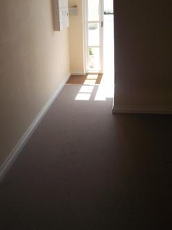 Flotex carpet (3)
