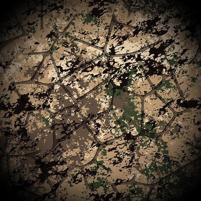 SOF_Western_Final_edited.jpg