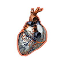 thumbnail course heart sticker.png