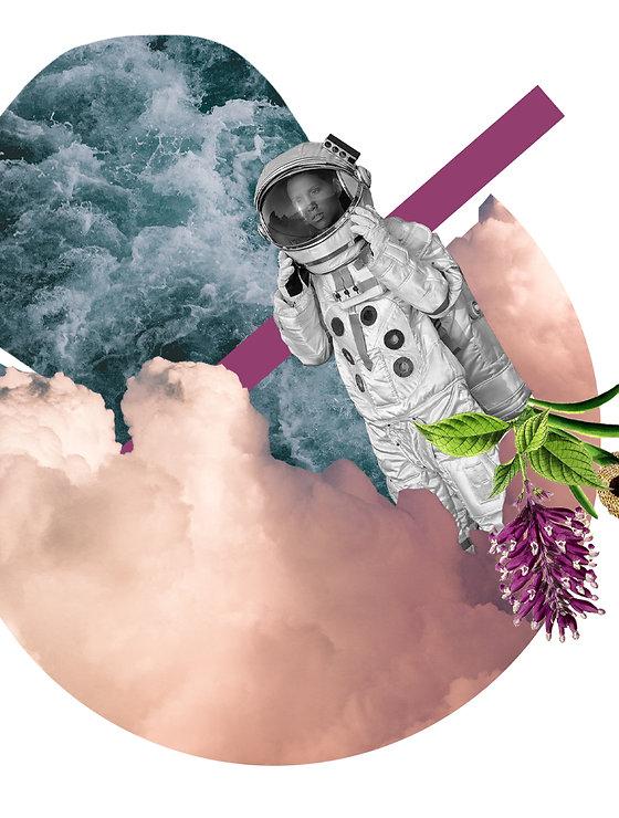 Collage 3 transparant.jpg