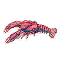 thumbnail course lobster sticker.png