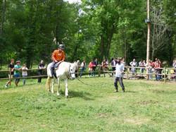 teràpia amb cavalls