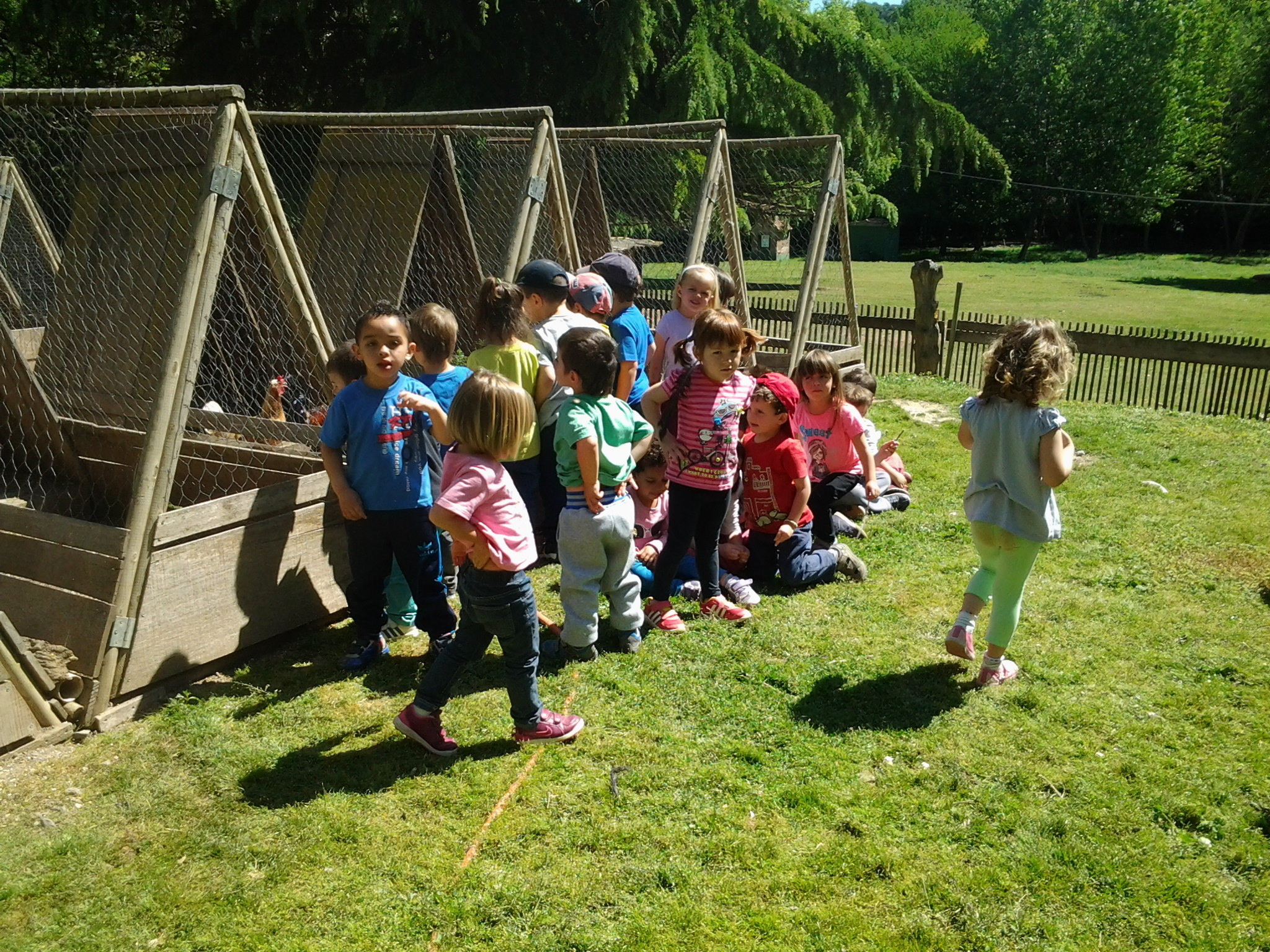 visita escolar nens i nenes