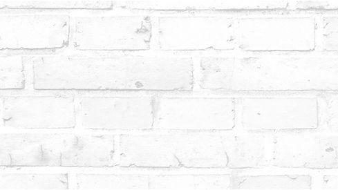 Brick_White Brick copy.jpg