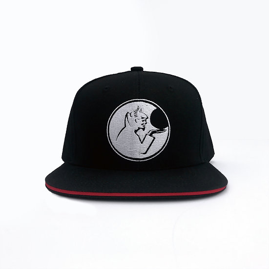 The Invisible Line Snapback