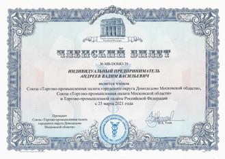 ИП Андреев ТПП Дмд 03-2021