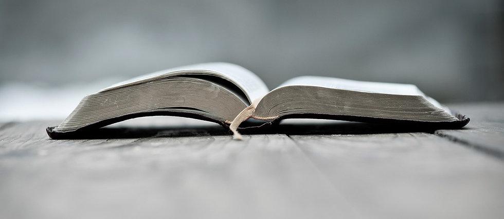 bible-gray5.jpg