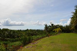 A Week In Paradise (Palau)