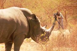 Desafio Africa 2013