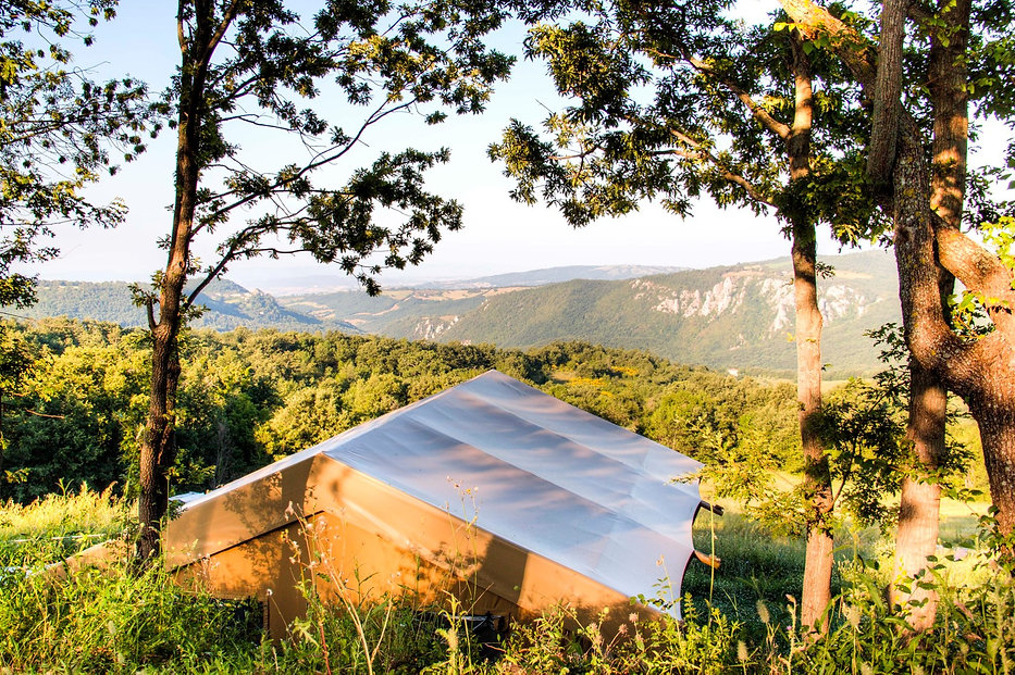 Sunshine with a Valley view.jpg