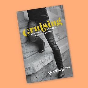 cruise-fin.jpg
